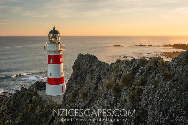 Cape Palliser at sunset, Palliser Bay, Wellington Region, North Island, New Zealand, NZ