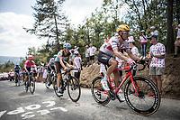 Jasper Stuyven (BEL/Trek Segafredo) in the breakaway group up the Mur d'Aurec-sur-Loire (3.2km at 10.8%)<br /> <br /> Stage 9: Saint-Étienne to Brioude (170km)<br /> 106th Tour de France 2019 (2.UWT)<br /> <br /> ©kramon