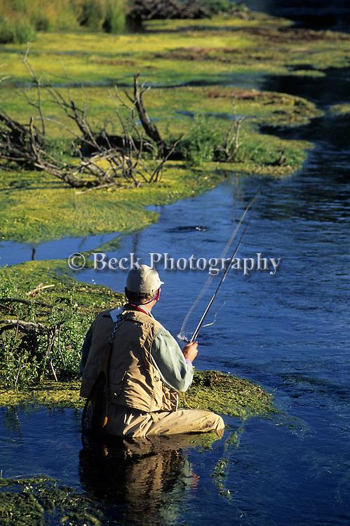 Fly fishing image