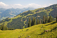 Austria, Kitzbuhel, Juli 15, 2015, Tennis, Davis Cup, vieuw from the telpher carrier<br /> Photo: Tennisimages/Henk Koster