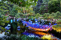 Chihuly exhibit at the Denver Botanic Gardens Japanese Gardenf