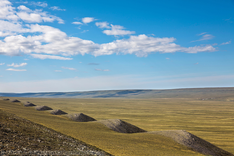 Geological formations along Archimedes ridge, Utukok Uplands, National Petroleum Reserve Alaska, Arctic, Alaska.