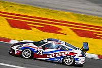 #74 TPC Racing, Porsche 991 / 2018, GT3P: Tom Kerr (M)