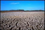Florida Drought