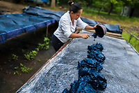 A Salvadoran farm worker spreads out the indigo paste onto a metal sheet table to dry in the sun at the semi-industrial manufacture near San Miguel, El Salvador, 12 November 2016. For centuries, indigo, a natural deep blue dye extracted from the leaves of tropical plants (Indigofera), has been known to the native indigenous inhabitants of Central America who used the blue tincture to color their fabrics and pottery. Although demand for natural indigo dropped significantly at the end of 19th century when a synthetic indigo was firstly introduced, commercialization of natural indigo has risen again during the last decades. Small-scale indigo farms, processing the crop on sustainable and ecological basis, are growing throughout the country, returning El Salvador to the place of the main natural indigo producer in Latin America.