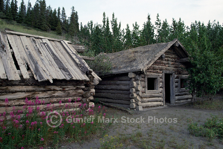 Old Log Cabins, Silver City (1883), YT, Yukon Territory, Canada - Ghost Town at Kluane Lake