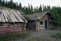 Old Log Cabins, Silver City (1883), YT, Yukon Territory, Canada - Ghost Town at Kluane Lake