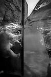 """The Bather""<br /> Polar Bear Enclosure<br /> Central Park Zoo<br /> Manhattan, NY<br /> From the ""Captivity"" series<br /> © Thierry Gourjon-Bieltvedt"