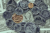 Bald Eagle as used on United States of America Money.