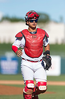 Surprise Saguaros catcher Jeremy Martinez (4), of the St. Louis Cardinals organization, jogs back to the plate during an Arizona Fall League game against the Peoria Javelinas at Surprise Stadium on October 17, 2018 in Surprise, Arizona. (Zachary Lucy/Four Seam Images)