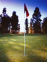 A red flag on a golf green.
