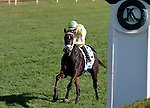 """LEXINGTON, KY - OCTOBER 12: #2 La Coronel and jockey Florent Geroux win the 26th running of the JPMorgan Chase Jessamine (Grade 3) $150,000 """"Win and You're In Juvenile Fillies Turf Division"""" for owner John Oxley and trainer Mark Casse at Keeneland Race Course.  October 12, 2016, Lexington, Kentucky. (Photo by Candice Chavez/Eclipse Sportswire/Getty Images)"""