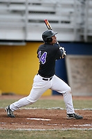 March 22nd 2009:  First baseman Timothy Cozier (14) of the Niagara University Purple Eagles during a game at Sal Maglie Stadium in Niagara Falls, NY.  Photo by:  Mike Janes/Four Seam Images