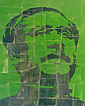 World Record attempt for largest crop mosaic in the world by Ahsanul Haque Nayem