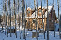 Log Cabin, Wiseman