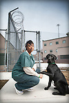 Inmate Jamilyah Nelson, and her dog Brutus, at the Denver Women's Correctional Facility train dogs that are in the Prison Trained K-9 Companion Program (PTKCP) on February 24, 2010.  Dog owners pay $450 per dog for a month-long obedience training program.  The dog stays with their trainer 24/7, and sleeps in a crate in the inmate's cell.  Photo by Ellen Jaskol.