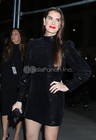 NEW YORK, NY - NOVEMBER 11: Brooke Shields at the 2019 Glamour Women of the Year Awards at Alice Tully Hal, Lincoln Center in New York City on November 11, 2019. Credit: RW/MediaPunch