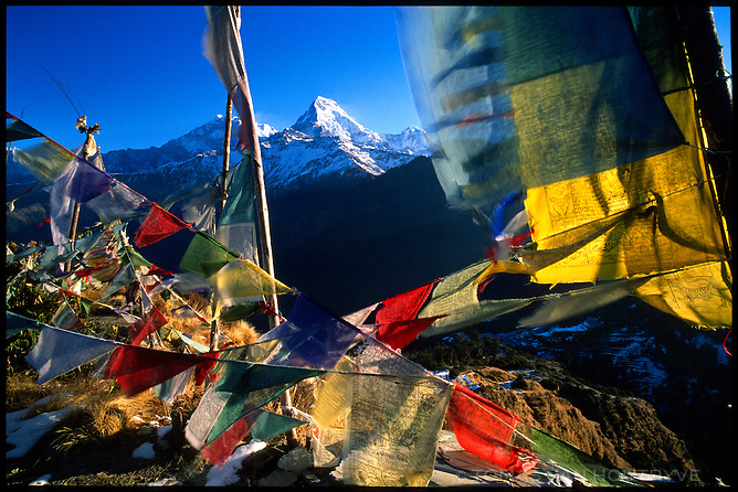 The Himalayan peak of Annapurna South (7219m) is seen behind Buddhist prayer flags on 1 February 2004.