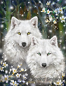Kayomi, REALISTIC ANIMALS, REALISTISCHE TIERE, ANIMALES REALISTICOS,wulf,wulfs, paintings+++++,USKH309,#a#, EVERYDAY