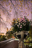 Flowers in a big planter on Bow Bridge at night.