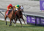 November 2, 2019 : Iridessa, ridden by Wayne Lordan, wins the Maker's Mark Breeders' Cup Filly & Mare Turf on Breeders' Cup Championship Saturday at Santa Anita Park in Arcadia, California on November 2, 2019. Chris Crestik/Eclipse Sportswire/Breeders' Cup/CSM