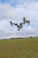 Drone flying above wheat crop