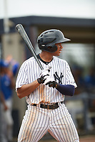 GCL Yankees East center fielder Robert Javier (19) at bat during the first game of a doubleheader against the GCL Blue Jays on July 24, 2017 at the Yankees Minor League Complex in Tampa, Florida.  GCL Blue Jays defeated the GCL Yankees East 6-3 in a game that originally started on July 8th.  (Mike Janes/Four Seam Images)