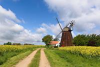 Windmühle Swanemølle  in Swaneke auf der Insel Bornholm, Dänemark, Europa<br /> windmill Swanemølle  in Swaneke, Isle of Bornholm Denmark