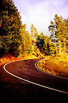 Road up Mount Constitution, Orcas Island, San Juan Islands, Washington State.  Travel ideas at www.douglasortonimaging.com