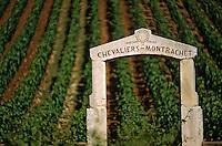 Europe/France/Bourgogne/21/Côte d'Or/Puligny Montrachet: Détail du portail dans le vignoble