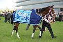 Horse racing: Hanshin Juvenile Fillies