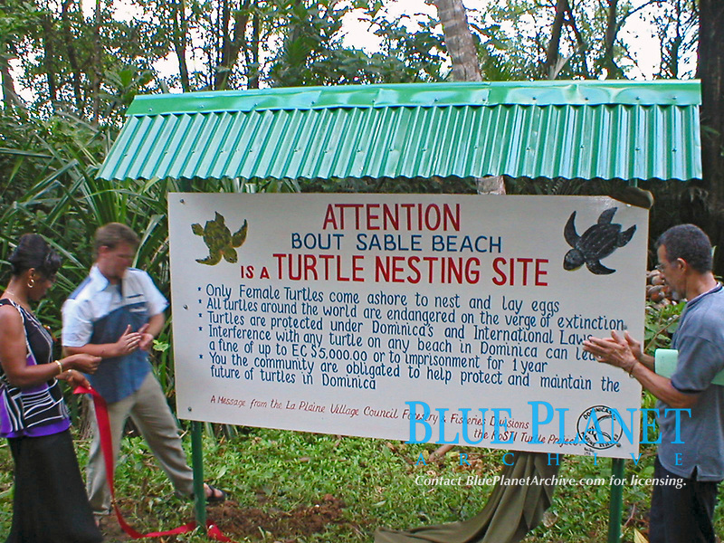 sign explaining to tourists about the sea turtle nesting beach, Dominica, Caribbean, Atlantic