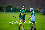 Kerry's Ann Marie Leen in action against Meath in the Camogie Intermediate Championship