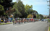 The peleton rides down Upper Plain Rd during stage five of the NZ Cycle Classic UCI Oceania Tour in Masterton, New Zealand on Tuesday, 26 January 2017. Photo: Dave Lintott / lintottphoto.co.nz