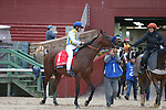 March 14, 2020: Nadal (1) with jockey Joel Rosario aboard before the running of the Rebel Stakes at Oaklawn Racing Casino Resort in Hot Springs, Arkansas on March 14, 2020. Justin Manning/Eclipse Sportswire/CSM