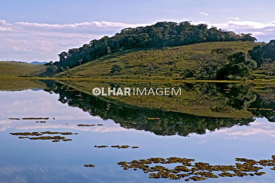 Bacia do Rio São João. Reserva Biológica de Poço das Antas. Rio de Janeiro. Foto de Adriano Gambarini.