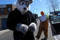 The furries FreakyLynx, left, and J Badger prepare for the St. Patrick's For All parade in Woodside, Queens.   Furries are a group of people who identify themselves not as being human but as a walking, talking animal.  For some the lifestyle is complete, animal traits reach into every aspect of life from mundane trips to a grocery store to sexual fantasies.  For others, involvement in the furry fandom is limited to public performances and meet-and-greets.  .