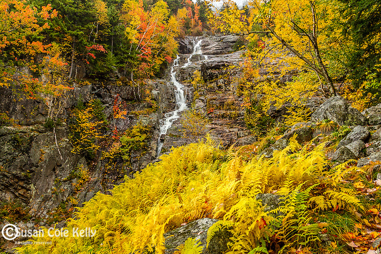 Fall foliage at Silver Cascade in Crawford Notch, White Mountain National Forest, New Hampshire, USA