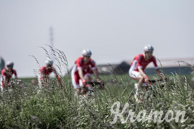 Team Cofidis. <br /> <br /> <br /> GP Marcel Kint 2018 <br /> Kortrijk > Zwevegem 174.8km (BELGIUM)