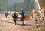 Two youngsters, one carrying a large basket, follow their flock of sheep through a rural lane.  The Uighurs are an Turkic ethnic group in Central Asia, particularly China.