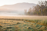 A misty morning in Brownsville, West Windsor, VT, USA