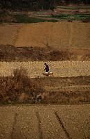 Asie/Chine/Jiangsu/Env Nankin: La campagne - Paysan rentrant du marché avec sa palanche sur le dos<br /> PHOTO D'ARCHIVES // ARCHIVAL IMAGES<br /> CHINE 1990