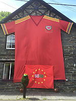 """Pictured: The 8m x 5m Wales football shirt in Dinas Mawddwy, Gwynedd, north Wales, UK.<br /> Re: Lynne Humphreys-McCrickett has created a 8m x 5m football shirt and displaying it on the side of her house at Minllyn in Dinas Mawddwy, Gwynedd, north Wales, UK.<br /> She said: """"We originally created it in 2016 because there were not any fan zones in north Wales, there certainly weren't any where we are,"""" Lynne said. """"Our neighbour is a football fan too so we were like we will make our own fan zone.""""<br /> Lynne, 50, and her husband John McCrickett, 54, are massive football fans and set about creating the shirt together, which they have dubbed 'Y Crys Mawr Coch', meaning the big red shirt.<br /> Having trained as a seamstress with Laura Ashley when she was just 16, studied at London College of Fashion and having worked as a pattern cutter in London for 20 years, she certainly has the skills for it."""