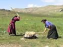 Armenia 2007  <br /> Yezidi women beating wool during the summer season   <br /> Armenie 2007  <br /> Femmes yezidi battant la laine dans un village en ete.