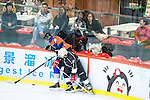 Connor Daly (l) of Principal fights for the puck with Terence Chim of Gaggia Empire during the Principal Standard League match between Gaggia Empire vs Principal at the Mega Ice on 29 November 2016 in Hong Kong, China. Photo by Marcio Rodrigo Machado / Power Sport Images