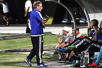 CUCUTA - COLOMBIA -31 -07-2015: Ricardo Lunari, tecnico de Millonarios, durante partido entre Cucuta Deportivo y Millonarios, por la fecha 4 de la Liga Aguila II-2015, jugado en el estadio General Santander de la ciudad de Cucuta.  / Ricardo Lunari coach of Millonarios, during a match between Cucuta Deportivo and Millonarios, for the date 4 of the Liga Aguila II-2015 at the General Santander Stadium in Cucuta city, Photo: VizzorImage / Manuel Hernandez/ Cont.