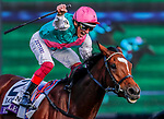 November 3, 2018: Enable #2, ridden by Frankie Dettori, wins the Longines Breeders' Cup Turf on Breeders' Cup World Championship Saturday at Churchill Downs on November 3, 2018 in Louisville, Kentucky. Eric Patterson/Eclipse Sportswire/CSM