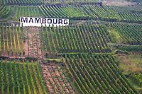 vineyard white sign mambourg grand cru sigolsheim alsace france