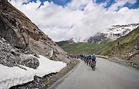 Team Movistar setting the pace up the Cormet de Roselend (2cat/1968m/5.7km@6.5%)<br /> <br /> 73rd Critérium du Dauphiné 2021 (2.UWT)<br /> Stage 7 from Saint-Martin-le-Vinoux to La Plagne (171km)<br /> <br /> ©kramon