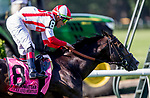 June 8, 2019 : #8, Bricks and Mortar, ridden by jockey Irad Ortiz, Jr., wins the Manhattan Stakes on Belmont Stakes Festival Saturday at Belmont Park in Elmont, New York. Kaz Ishida/Eclipse Sportswire/CSM